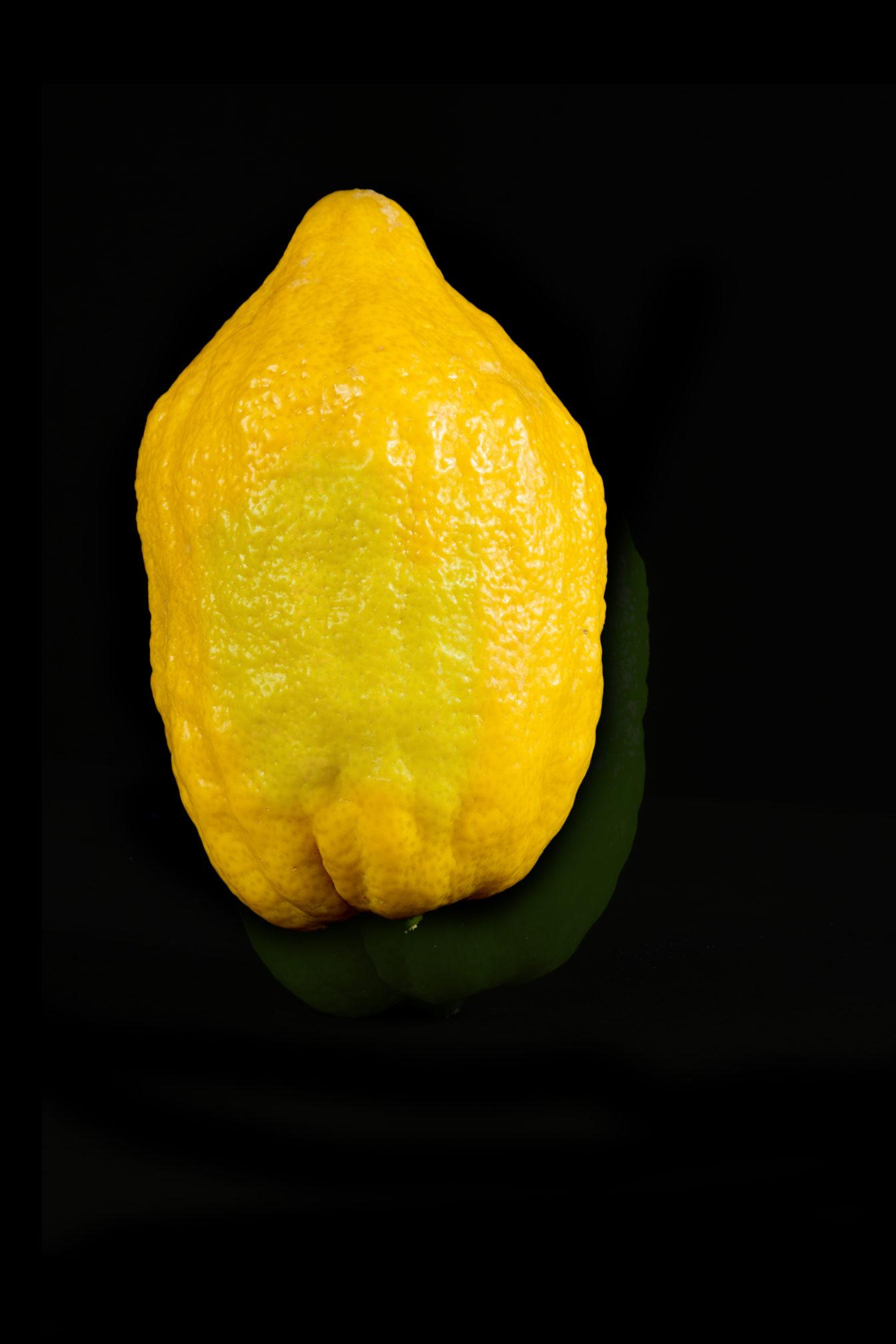 Cédrat-Capexo-lilot-fruits-Italie-Israel-citron-agrume