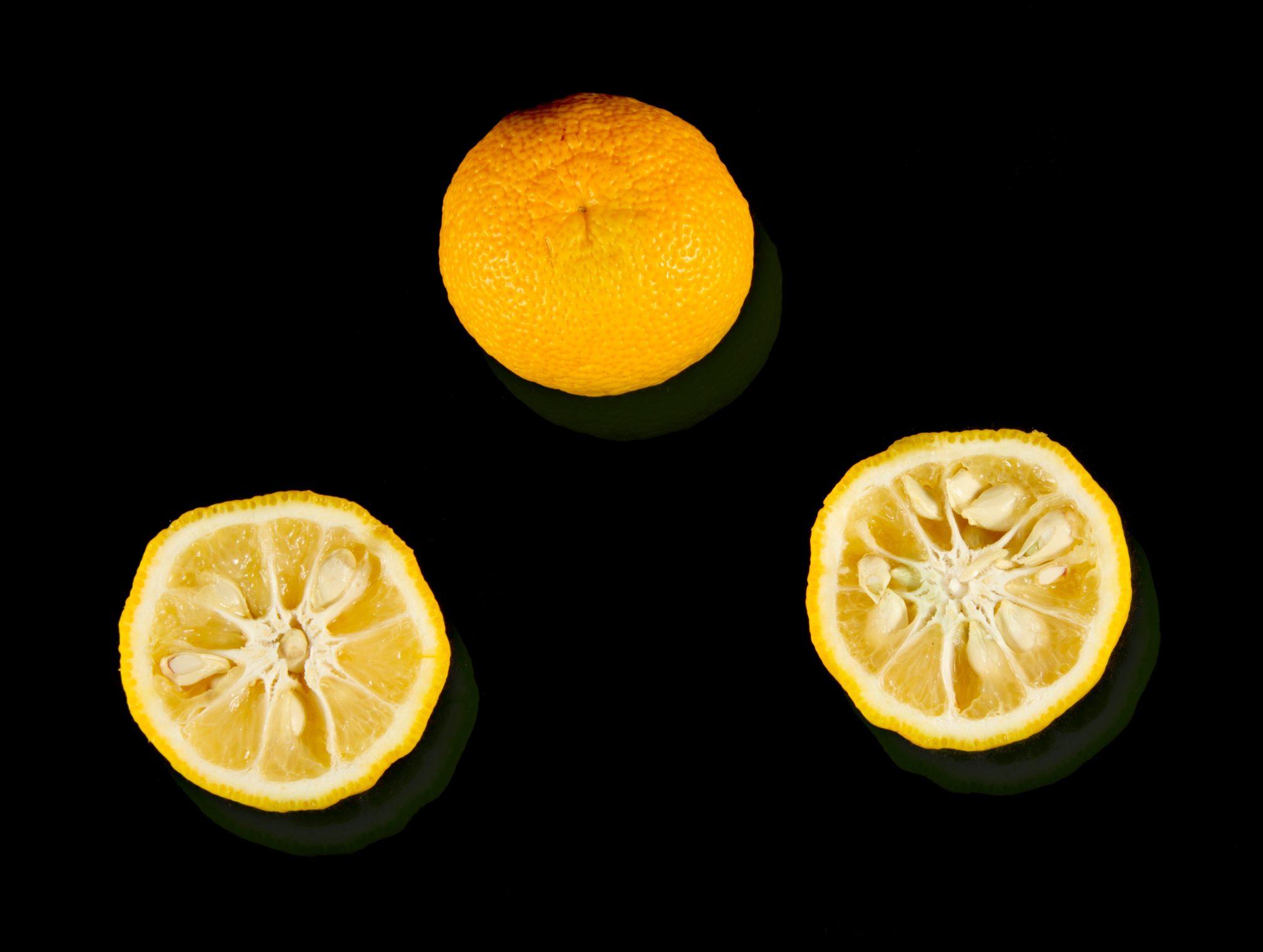 capexo--lilot-fruit-citron-yuzu-japon-france